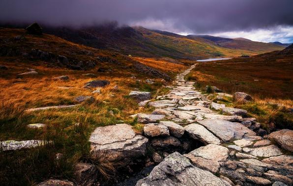 Картинка осень, трава, облака, природа, туман, камни, Великобритания, тропинка, желтая, Уэльс, Great Britain, Wales, полуостров
