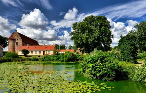 Картинка зелень, небо, солнце, облака, деревья, пруд, камыши, замок, дома, Дания, кусты, ряска, Nyborg