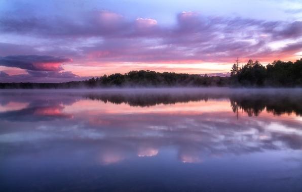 Картинка лес, небо, облака, деревья, закат, туман, озеро, отражение, вечер, Висконсин, дымка, США