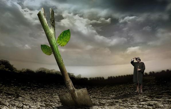Картинка жизнь, росток, лопата