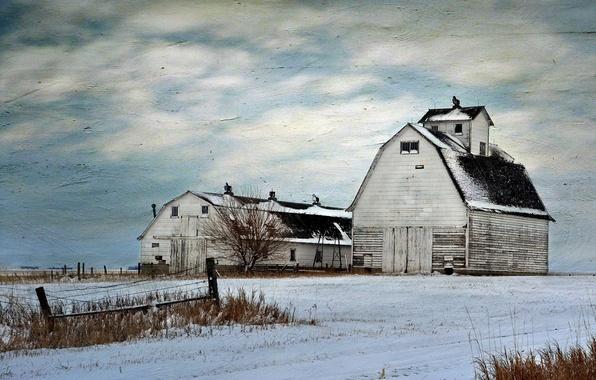Картинка поле, пейзаж, стиль, фон, ферма