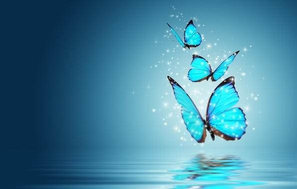 Картинка бабочки, фон, голубой, волшебство, обои, бабочка, настроения, wallpaper, magic, широкоформатные, butterfly, background, полноэкранные, HD wallpapers, …