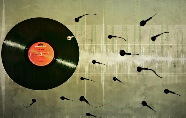 Фото обои музыка, винил, пластинка
