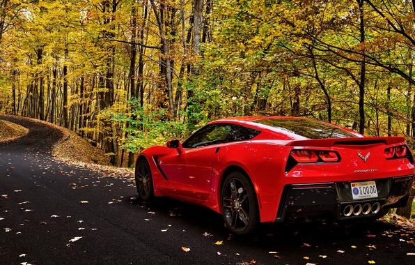 Картинка дорога, car, осень, лес, листья, деревья, corvette, forest, автомобиль, chevrolet, road, trees, nature, autumn, leaves