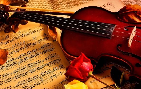 Картинка ноты, музыка, скрипка, розы
