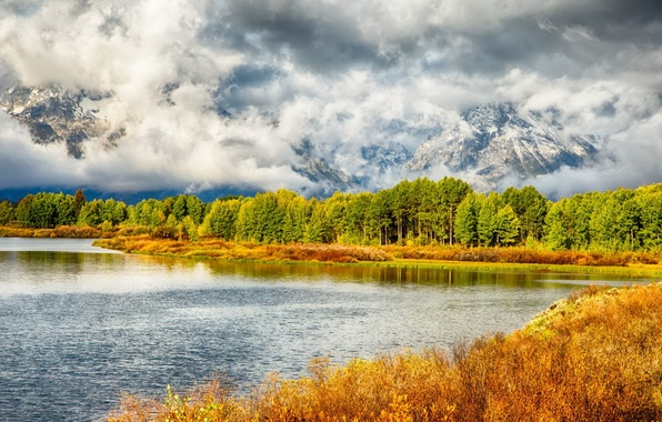 Картинка United States, Wyoming, Grand Teton National Park, Moran