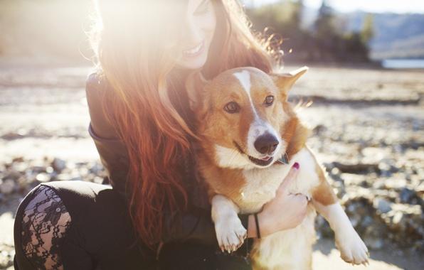 картинки девушка и собака
