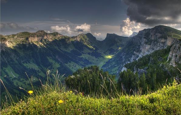 Картинка небо, трава, облака, деревья, цветы, горы, тучи, природа, долина, швейцария, switzerland