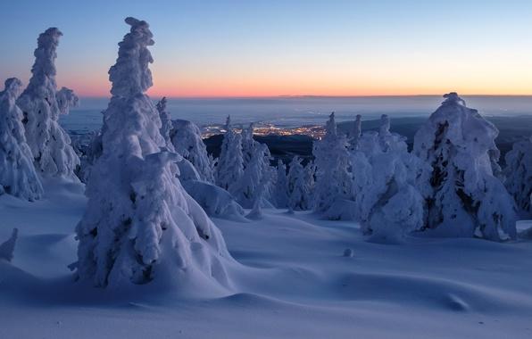 Картинка зима, снег, деревья, рассвет, утро, Германия, панорама, сугробы, Germany, Саксония-Анхальт, Saxony-Anhalt, горы Гарц, Harz Mountains