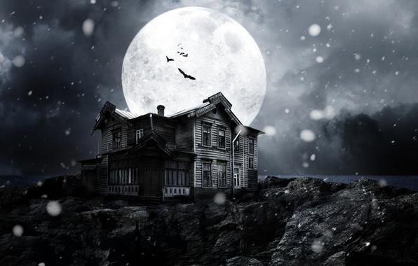 Картинка снег, ночь, луна, темно, dark, moon, ужас, horror, лунный свет, летучие мыши, night, snow, полночь, …