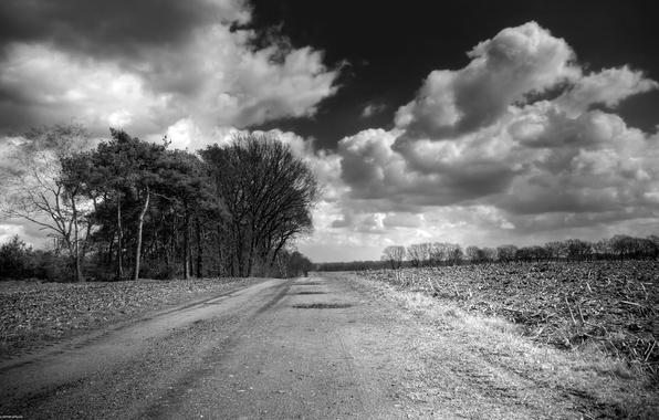 Картинка черно-белая, Облака, Поле, Дорога