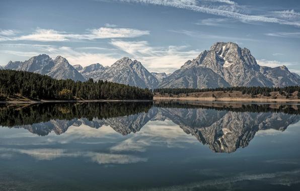 Картинка лес, горы, озеро, отражение, Wyoming, Гранд-Титон, Grand Teton National Park, Oxbow Bend Lake