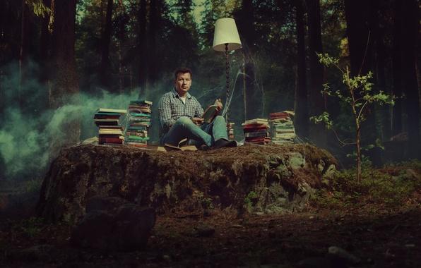 Картинка лес, книги, лампа, паутина, чтение, книголюб