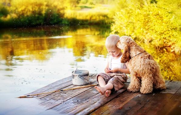Картинка лето, вода, детство, река, рыбалка, собака, рыбак, мальчик, ведро, друзья, удочка, спаниель