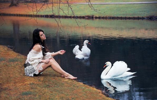 Картинка девушка, поза, озеро, парк, отражение, настроение, милая, модель, платье, брюнетка, ножки, красивая, лебеди, шикарная, Aurela …