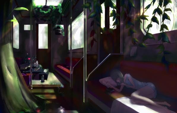 Картинка цветок, девушка, поезд, розы, растения, клетка, аниме, арт, вагон, лежит, подушка, книга, kikivi