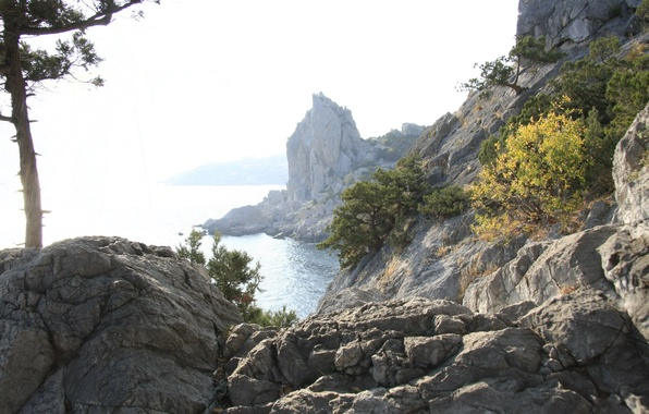 Картинка море, горы, природа, отдых, крым, путешествие, обои., крыло лебедя