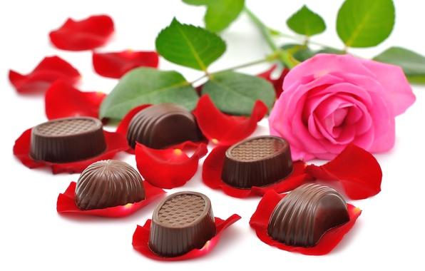 Картинка цветы, шоколад, красота, букет, конфеты, rose, красивые, beautiful, chocolate, petals