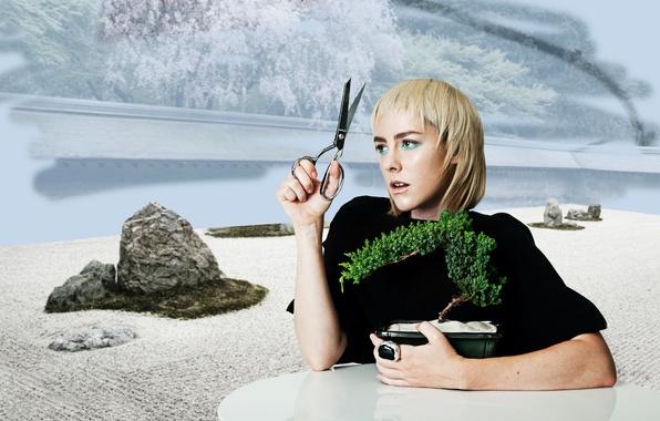 Картинка стол, фон, растение, макияж, актриса, прическа, блондинка, ножницы, Jena Malone, Bullett, Джена Мэлоун, декоративное, James …