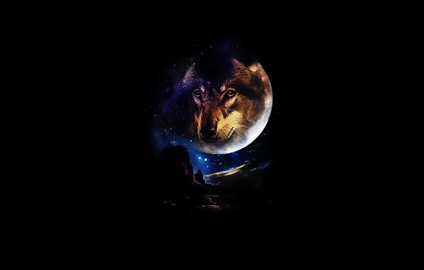 Картинка взгляд, звезды, горы, ночь, луна, волк