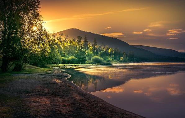Картинка лес, солнце, деревья, горы, озеро, рассвет, берег, утро