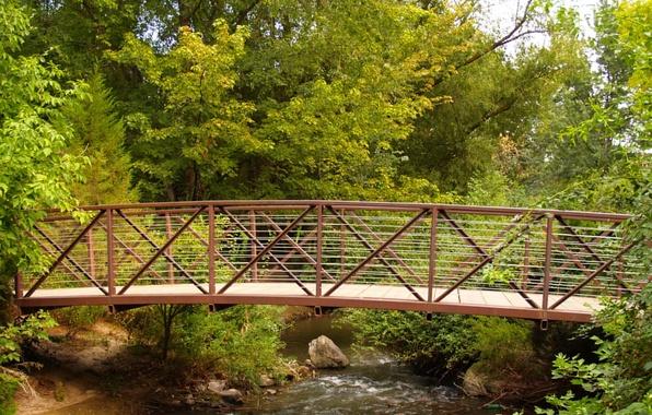 Картинка зелень, мост, ручей