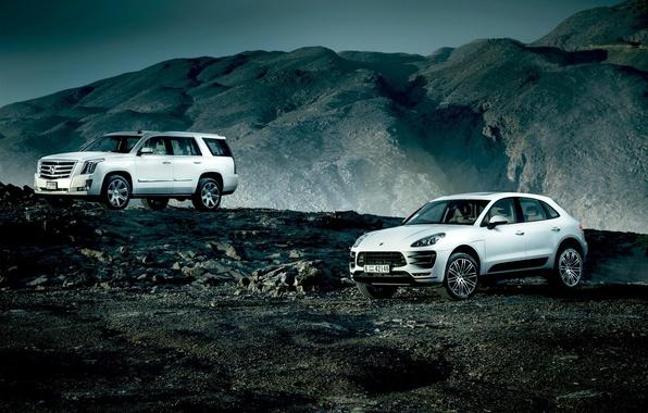 Картинка Cadillac, Porsche, Escalade, Landscape, Mountain, White, SUV, Village, Macan