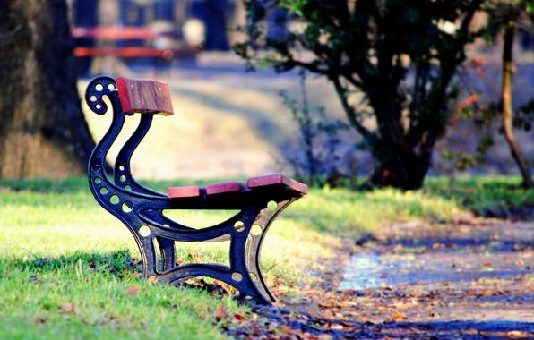 Картинка зелень, осень, трава, листья, деревья, скамейка, парк, фон, дерево, widescreen, обои, настроения, листва, лавочка, лава, …
