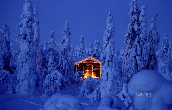 Картинка лес, небо, свет, снег, ночь, природа, огни, елка, новый год, избушка, рождество, ель, костер, домик, …