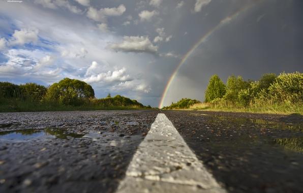 Картинка дорога, небо, асфальт, деревья, тучи, Радуга, после дождя, лужи
