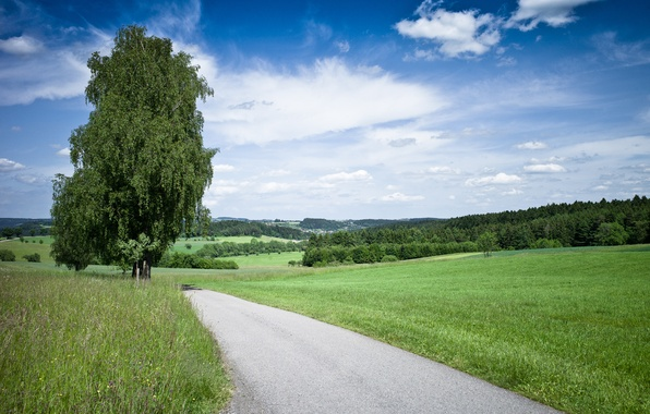 Картинка дорога, лето, небо, трава, природа, дерево