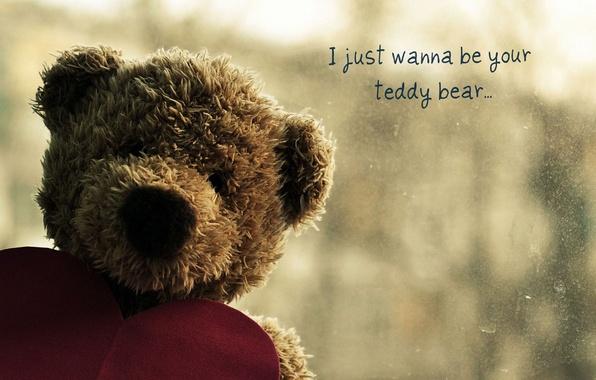 Картинка грусть, любовь, сердце, медведь, мишка, медвежонок, плюшевый, сердечко, bear, тедди, teddy