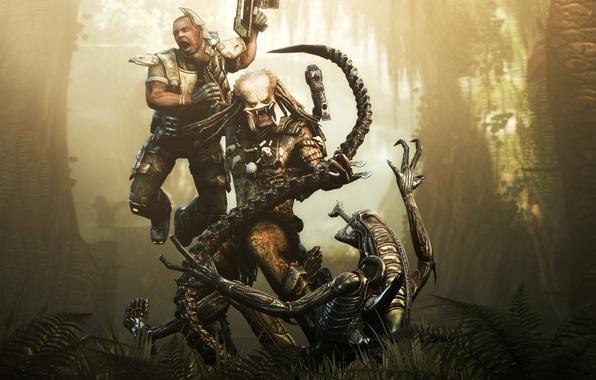 Картинка бой, Чужой, Хищник, Aliens versus Predator