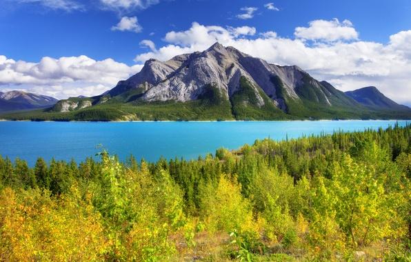 Картинка осень, лес, небо, листья, деревья, горы, озеро, канада, alberta, banff, abraham lake