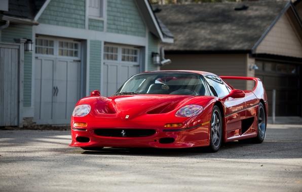 Картинка Ferrari, суперкар, феррари, 1995, F50