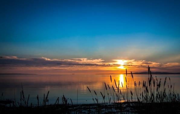Картинка небо, трава, закат, природа, река, фото, рассвет, побережье, Австралия, South Australia, Port Lincoln
