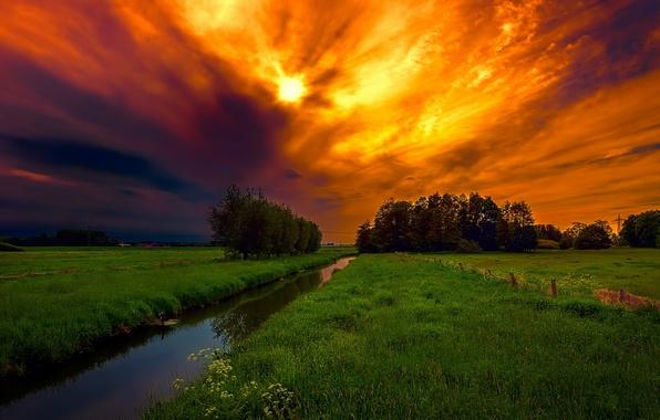 Картинка поле, небо, ночь
