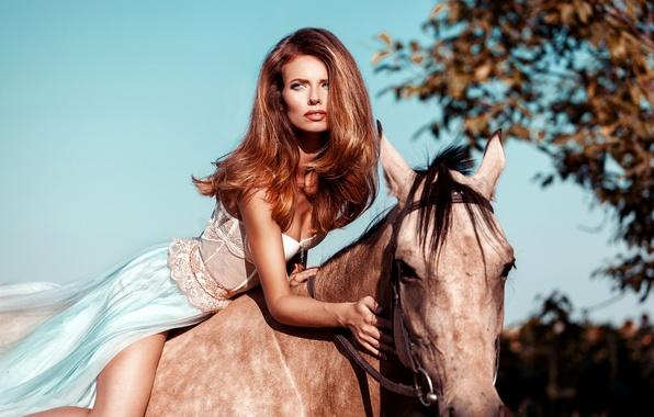 Картинка небо, девушка, солнце, поза, лошадь, макияж, платье, прическа, шатенка, красотка, наездница, боке