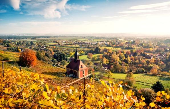 Картинка осень, небо, листья, облака, деревья, пейзаж, природа, город, дома, желтые, Германия, Дрезден, панорама, Germany, Dresden, …