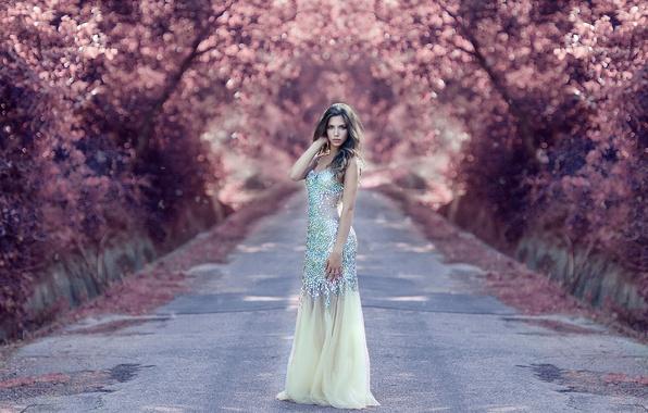 Картинка платье, на дороге, Alessandro Di Cicco, Jaded