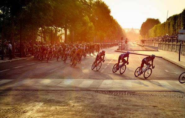 Картинка велосипед, гонка, Париж, Paris, спортсмены, марафон, Cycling, велогонщики, Tor De France