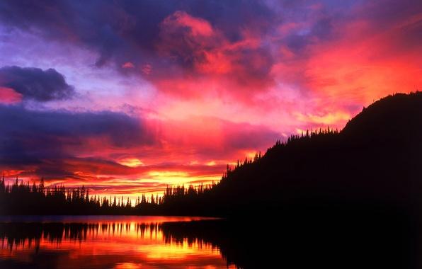 Картинка лес, небо, облака, деревья, закат, озеро, отражение, силуэт