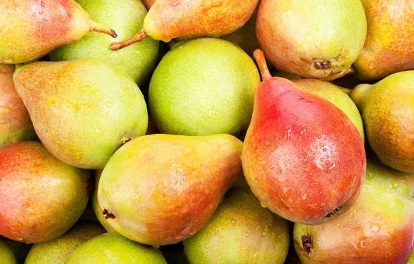 Картинка фрукты, груши, fruits, pears