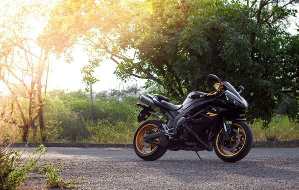 Картинка солнце, деревья, мотоцикл, чёрная, black, yamaha, bike, ямаха, yzf-r1