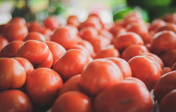 Картинка красные, помидоры, томаты