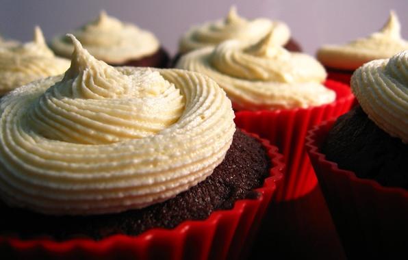 Картинка сладость, пирожное, крем, десерт, вкусно, тарталетки