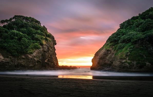 Картинка пляж, океан, скалы, рассвет, Auckland, Bethells Beach