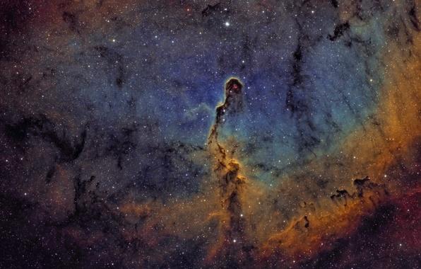 Картинка космос, Туманность, Цефей, в созвездии, Слоновий хобот
