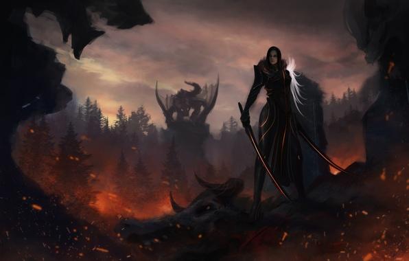 Картинка взгляд, девушка, оружие, фантастика, дракон, арт, рога, мечи
