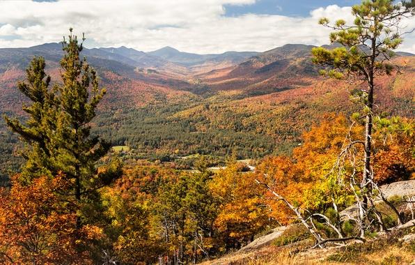 Картинка осень, небо, облака, деревья, пейзаж, горы, склон
